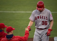 2016 © Angels Baseball LP. All Rights Reserved.